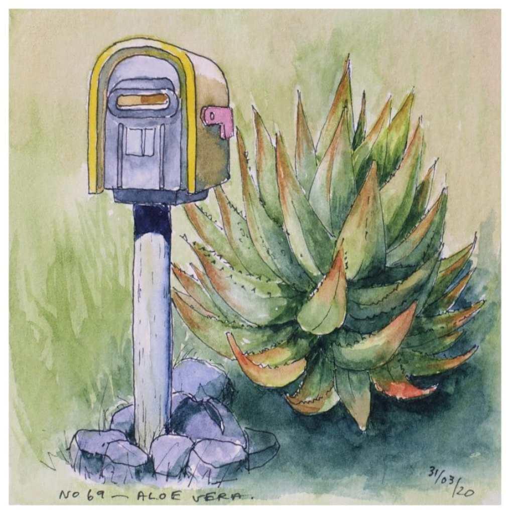 Postbox No. 69 - Aloe Vera