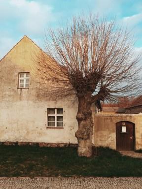 old house in Wildenbruch