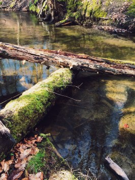 Hellmühler Fließ