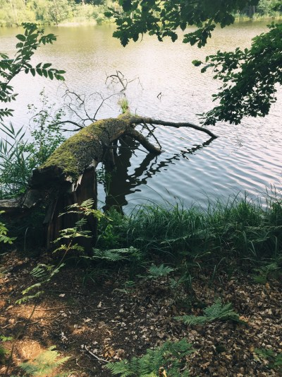 Mittelsee