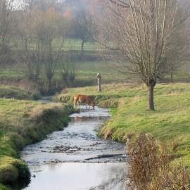 Meerdaagse hike Zuid-Limburg, 18-20 januari 2019