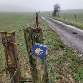 'Via Campaniensis', de weg door de Champagnestreek