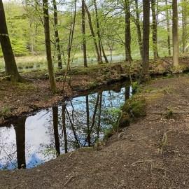 Fonteinbergroute Leuvenumse Bos, donderdag 13 mei 2021