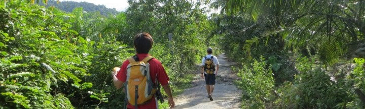 Gunung Arong - Share My Hikes | Hikers For Life