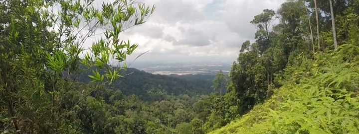 Gunung Pulai - Share My Hikes