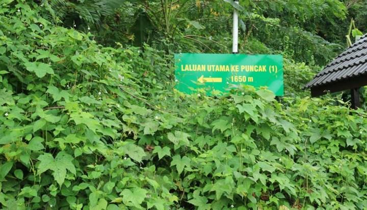 Gunung Baling Signboard
