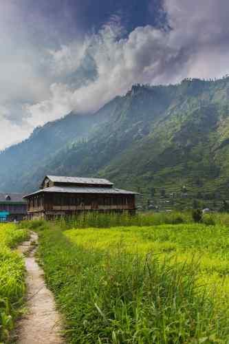 Pulga-kalga-fairy-forest-parvati-valley