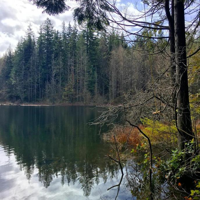 whyte lake hiking trail, west vancouver, seaview walk, gleneagles, westport road, hikes near vancouver, swimming spots near vancouver