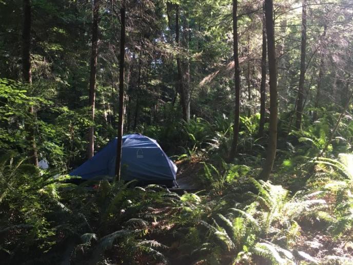 savary island campsite
