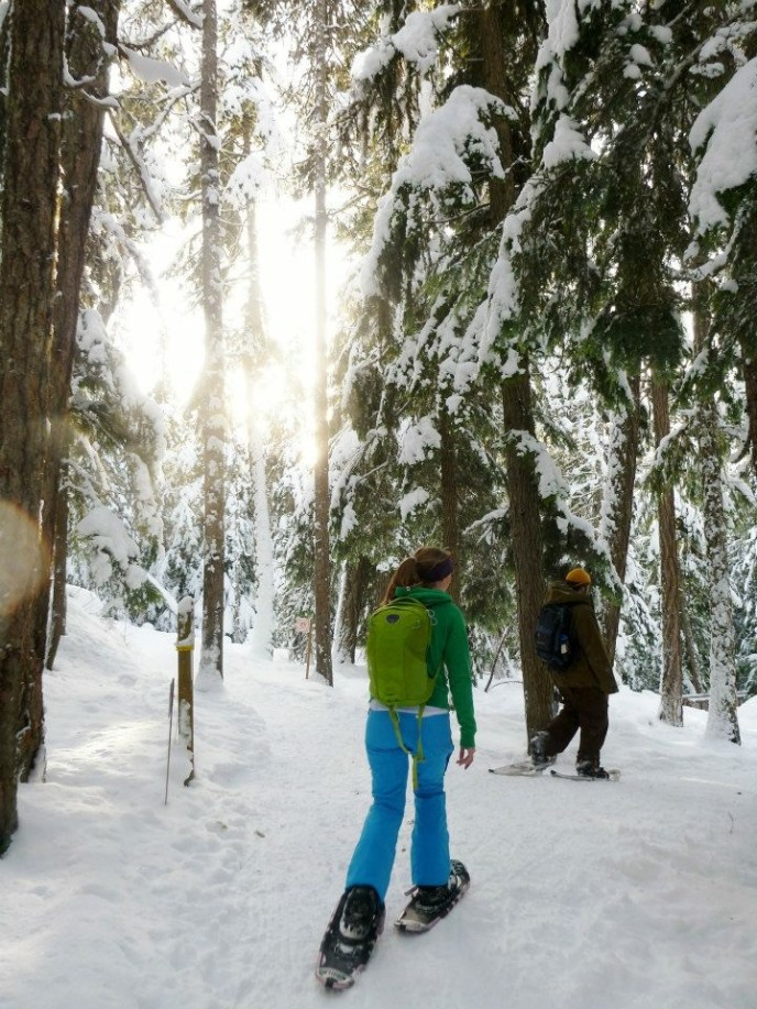 snowshoeing, winter hiking, hikes near vancouver, winter route, snowy hiking trail, vancouver showshoein
