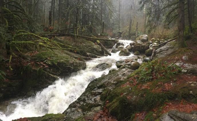 rainy hike to crystal falls coquitlam, hikes near vancouver, waterfall hikes