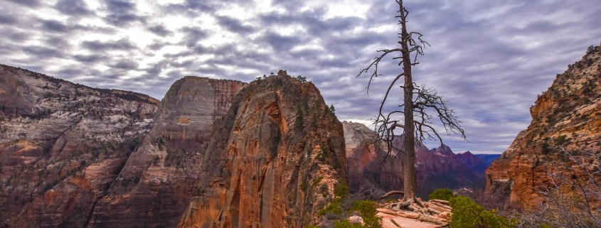 Angels Landing in Zion