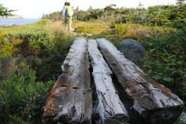 An interesting wooden bridge at the entrance to the meadow above Breaking Beach.
