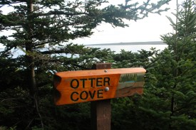 The trail marker at the Otter Cove viewpoint, the site of an old otter run.