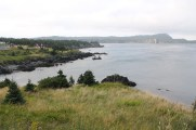 The beautiful coastline as the trail enters Ferryland.