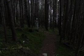 Deep, dark woods on the walk back!