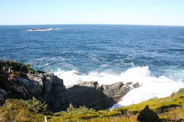 Some crazy waves in Bog Cove!