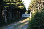 An old cemetery on the road back to Pouch Cove.
