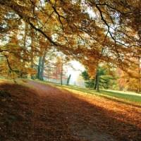 Badenweiler im Herbst