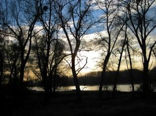 Novemberabend am Rhein bei Karlsruhe