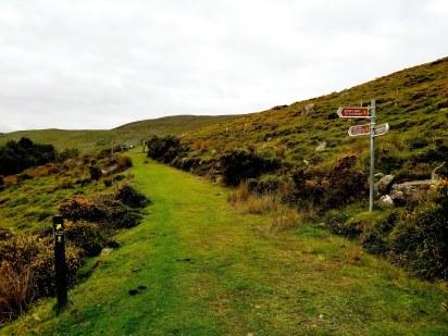 trail to windy gap20180904_151048