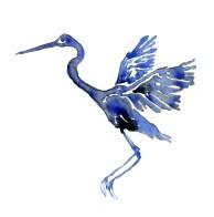 blue-bird-watercolor
