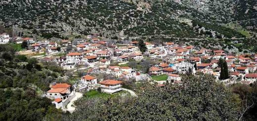 Image result for βάργιανη φωκιδας