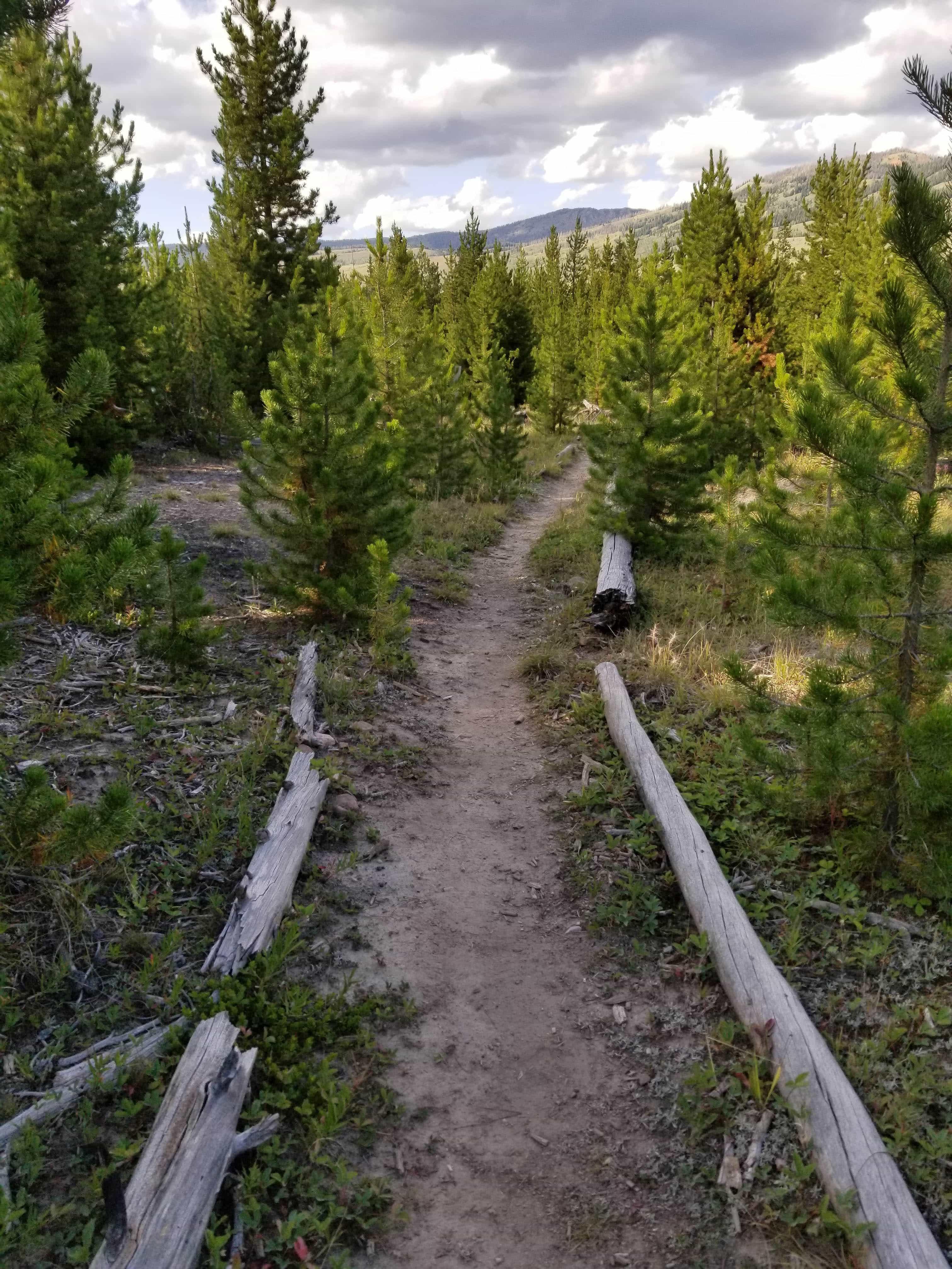 Lakeside Trail, Green River Lakes, Wyoming