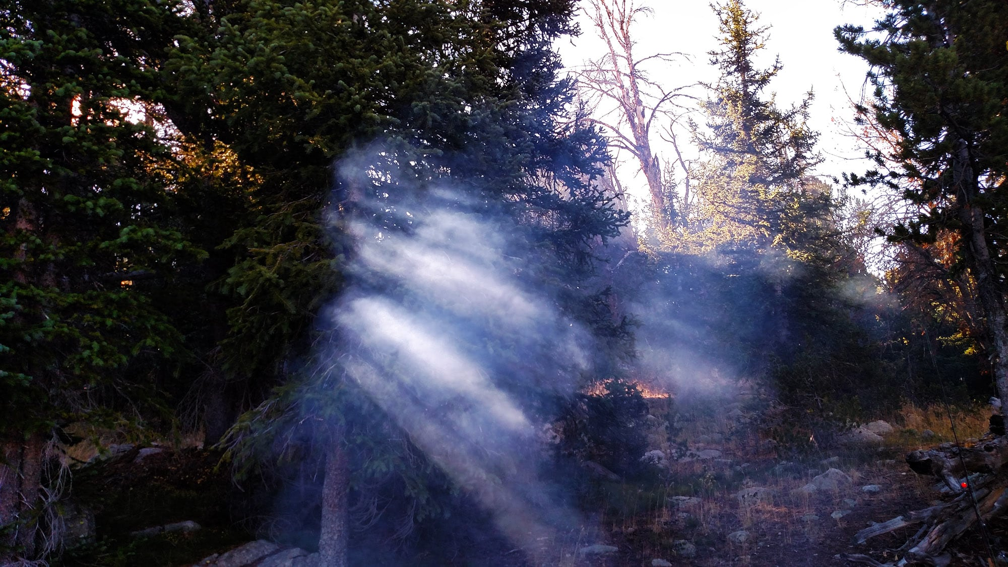 Smoke from campfire in early morning with sun light coming through trees