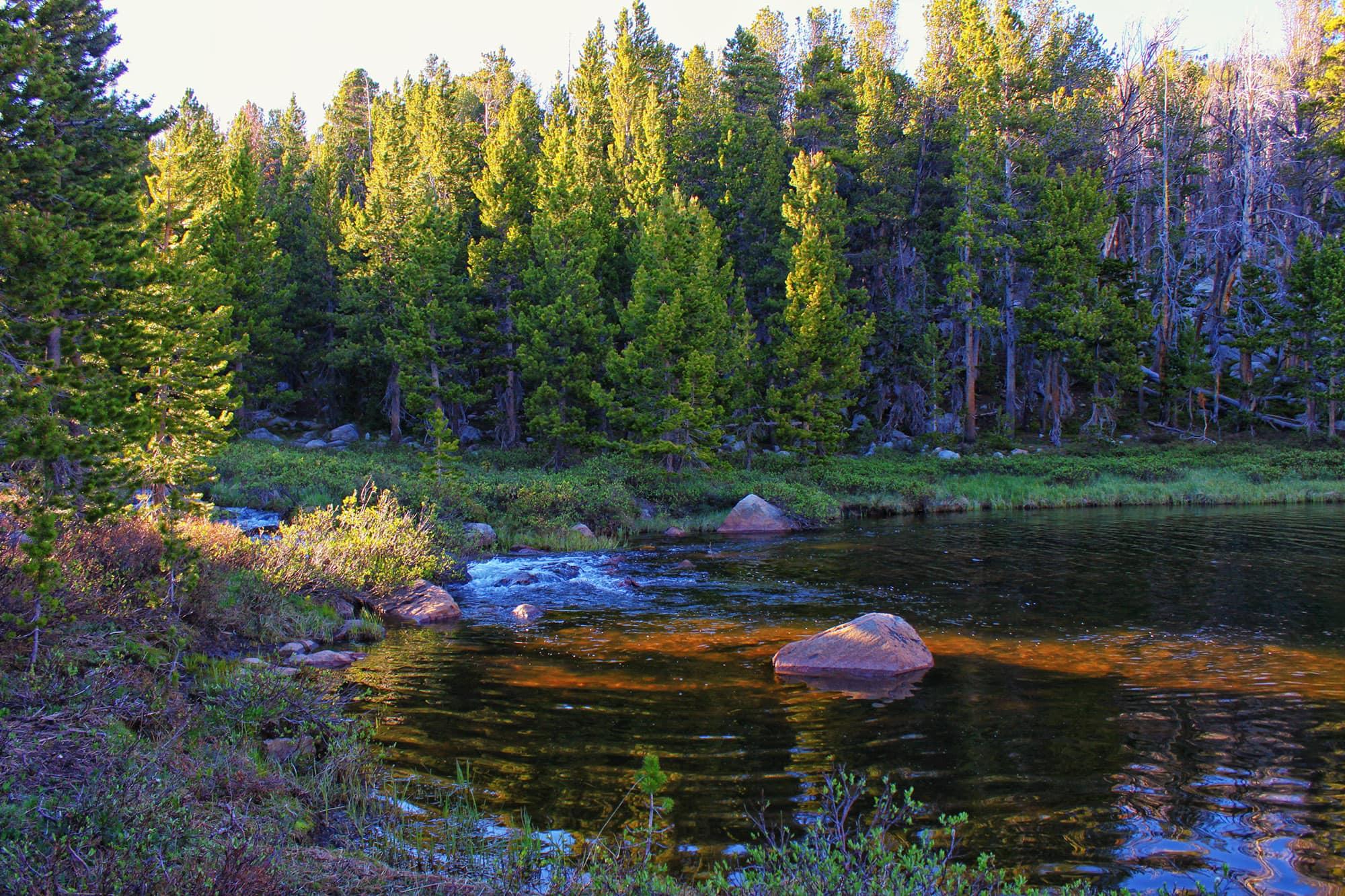 Silas Creek fishing area