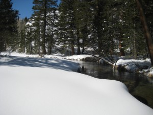 Winter snowshoeing trip in the John Muir Wilderness