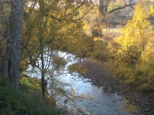Boulder, Colorado: A Peaceful Creek