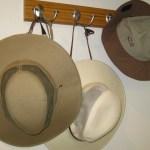 My Hiking Hats