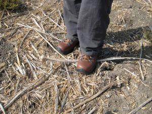 Wolverine Fulcrum Boots