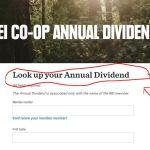 REI Dividend