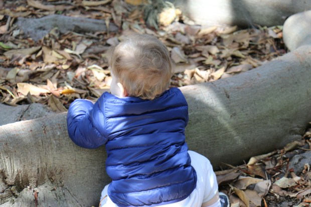 Hiking Baby staying cozy in a REI Co-op Reversible 650 Down Jacket