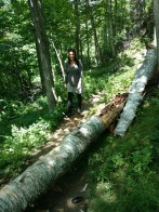 Denise log crossing early on the hike