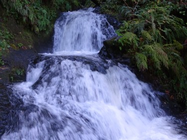 Part of Shepperd's Dell Falls