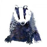 Badger watercolor