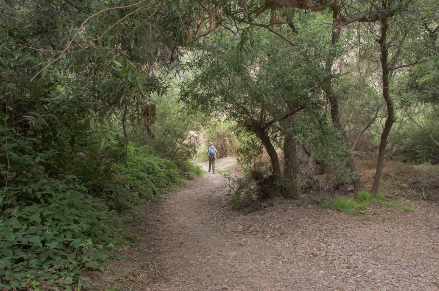 Rancho Penasquitos trail in San Diego