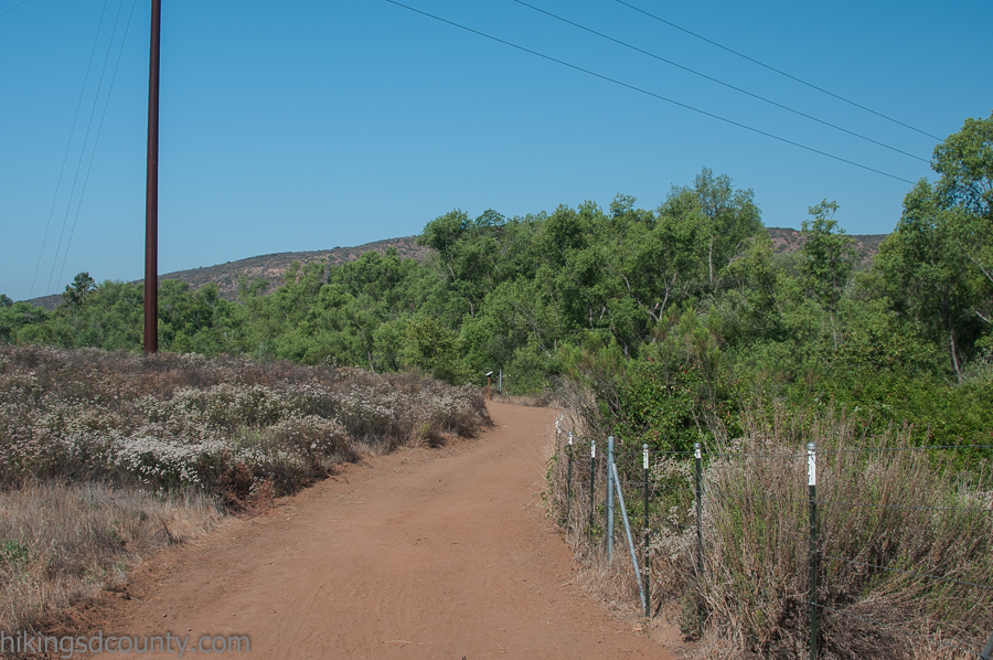 Trail along the Sweetwater River at San Diego National Wildlife Refuge