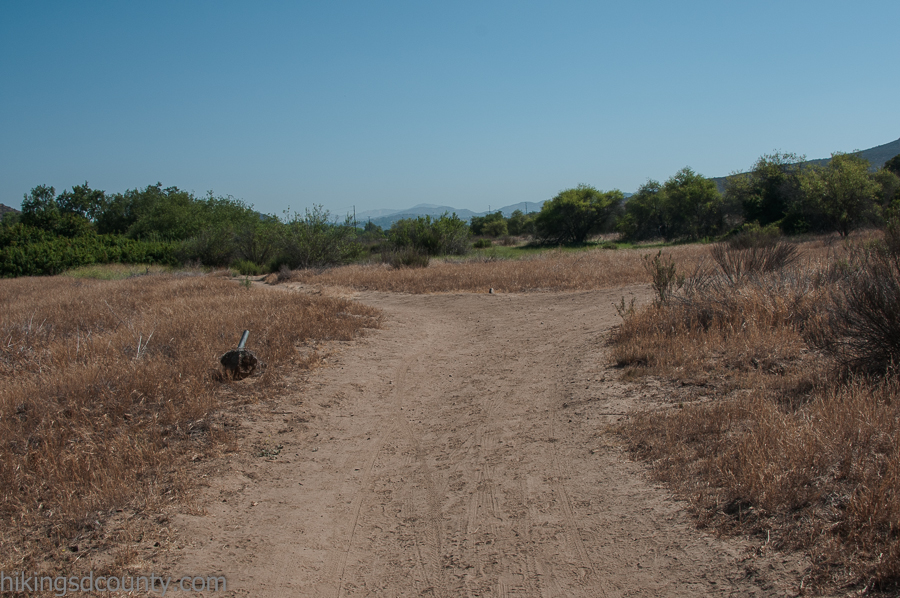 Fork in the trail at San Diego National Wildlife Refuge