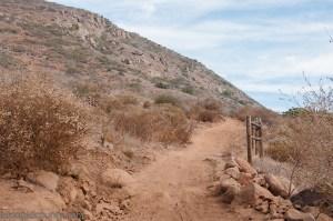 The trail up Bernardo Mountain