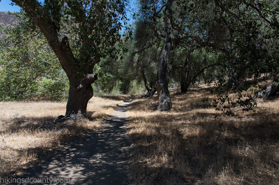 The trail at Hollenbeck Canyon