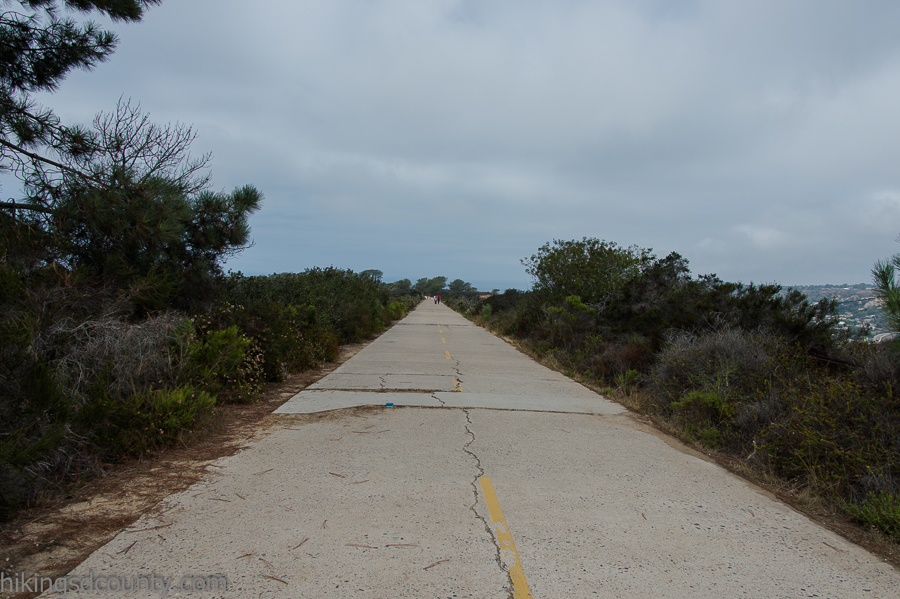 The original Highway 101 runs through Torrey Pines State Natural Reserve