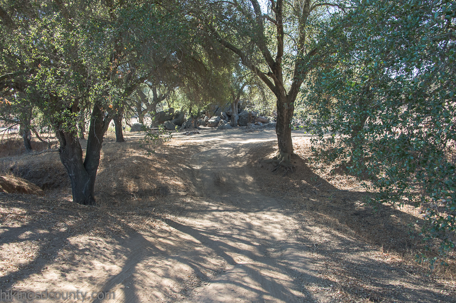 The beautiful shady picnic area at Ramona Grasslands