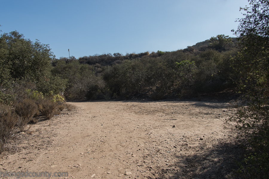 Nearing the road on the Tecolote Canyon trail