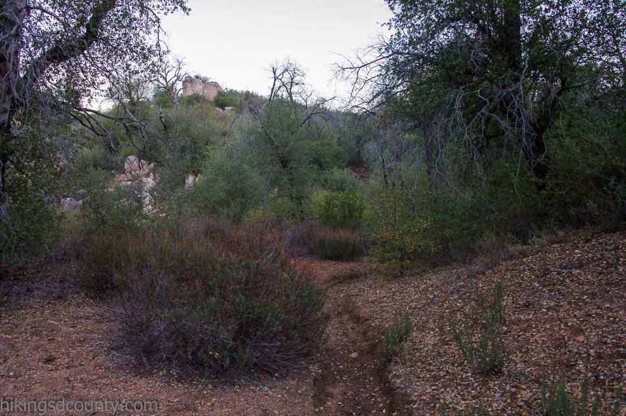 Cuyamaca Trail Map, Lower Descanso Creek Trail In Cuyamaca Rancho State Park, Cuyamaca Trail Map