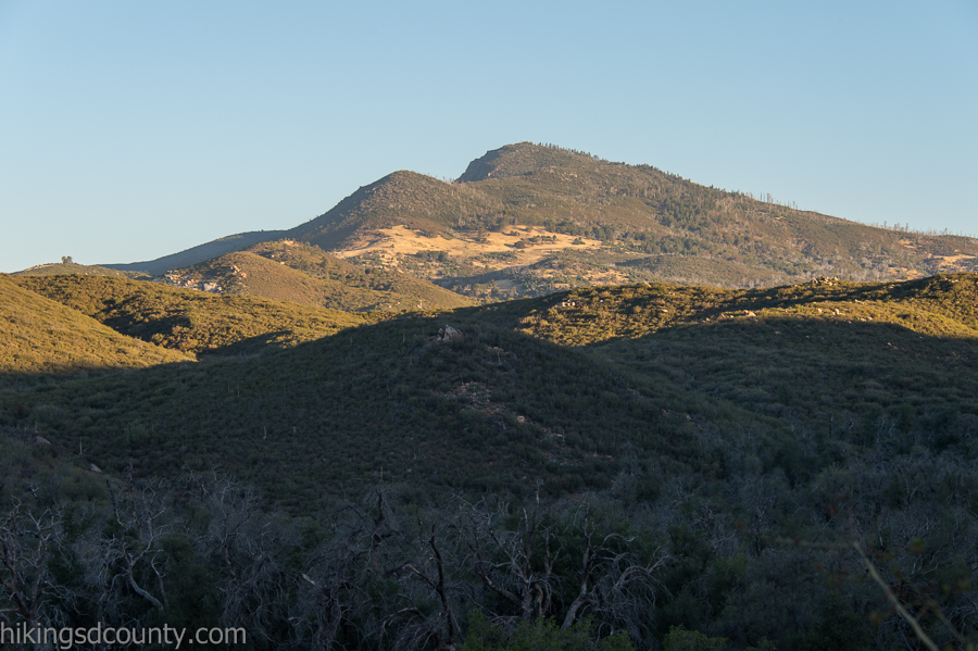 Cuyamaca Peak from the Upper Descanso Creek trail