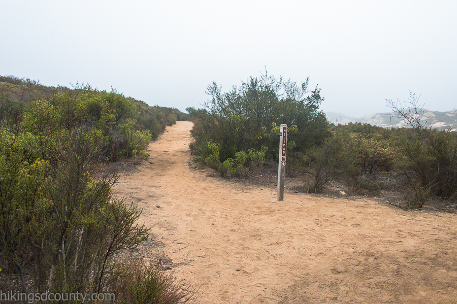 Trail branch leading to the helipad on the Iron Mountain Peak trail